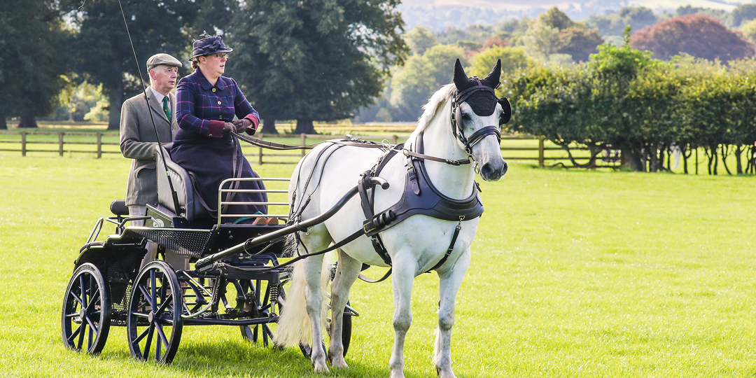 British Carriage Driving Championships